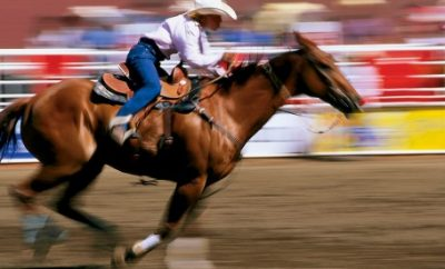 Culture, Fun, and Rodeo at Summer Festivals in Calgary