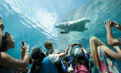 3 Reasons to Take Your Kids to Winnipeg This Summer
